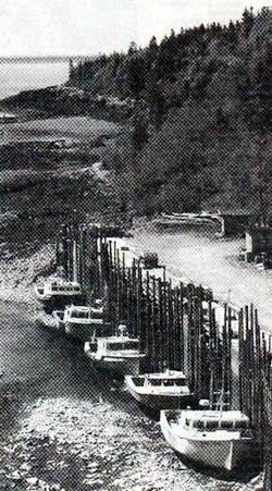 Mispec River Wharf