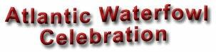 Atlantic Waterfowl Celebration, Sackville, New Brunswick