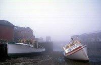 Boats at low tide, Campobello Island