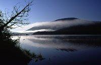 Nictau Lake, Mount Carleton Discovery Site