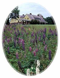 the summer residence of that visionary railway builder Sir William Van Horne
