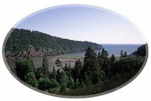 Fundy National Park - Parc national Fundy, New Brunswick