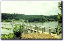Priceville Footbridge