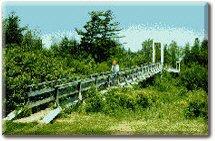 Yeoman's Footbridge