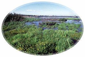 Tantramar Marshes-Sackville, New Brunswick