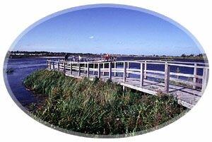 Sackvillle Waterfowl Park-Sackville, New Brunswick