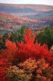 Fall Scenery, Sussex, New Brunswick